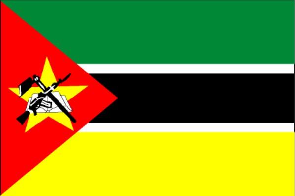 http://zhenghe.tripod.com/flags/big/mozambique.jpg