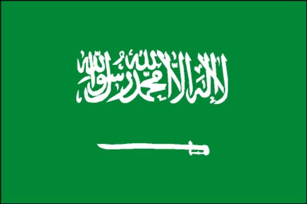 Flag of kingdom of saudi arabia